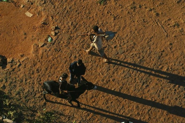 Oito municípios são reconhecidos em situação de emergência | Portal Brasil