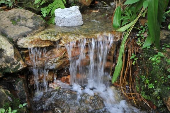 Evento recebe contribuições para o Fórum Mundial da Água | Portal Brasil