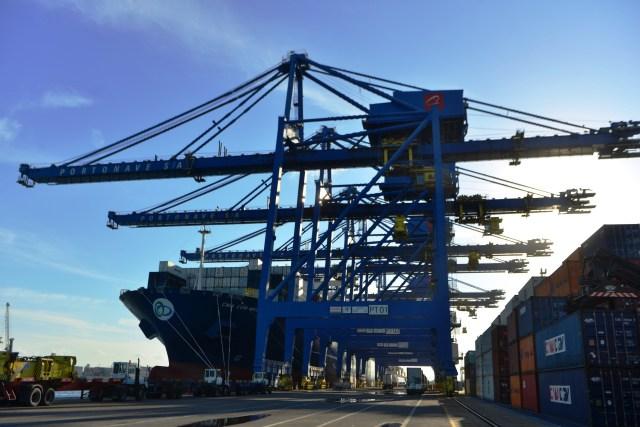 Portonave comemora 10 anos com mais de 5 mil escalas de navios   Portal Marítimo