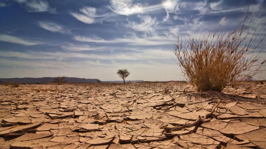 Governo reconhece situação de emergência em 20 municípios por causa da seca | Jornal do Brasil