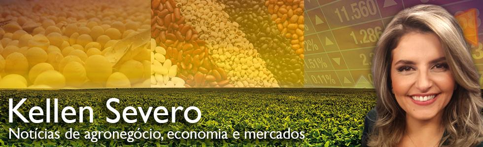 Redução de impostos abre caminho para a soja brasileira na China | Blog da Kellen Severo