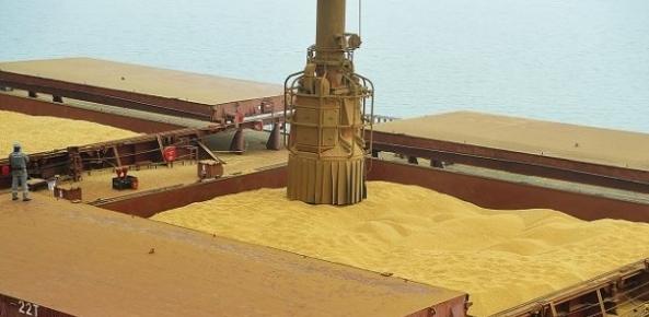 Porto de Paranaguá recebe tombadores para descarga de caminhões | CNA Brasil