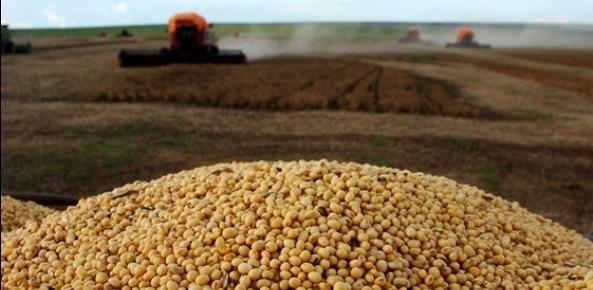 USDA eleva previsão de exportação de soja do Brasil em 2017/18; mantém safra | CNA Brasil