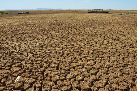 Municípios de cinco estados têm situação de emergência decretada | Portal Brasil