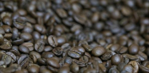 Exportação de café verde pelo Brasil em agosto cai 21% ante 2016, diz Cecafé | CNA Brasil